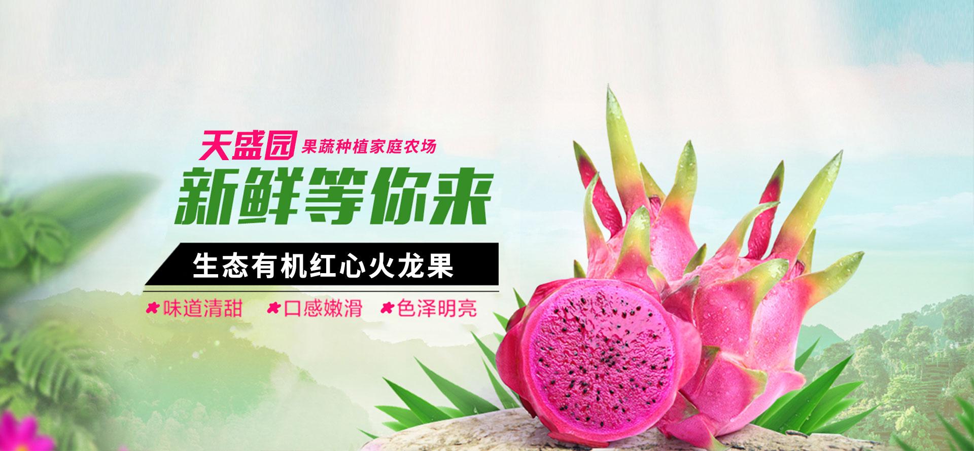 盱眙天盛园果蔬种植家庭农场